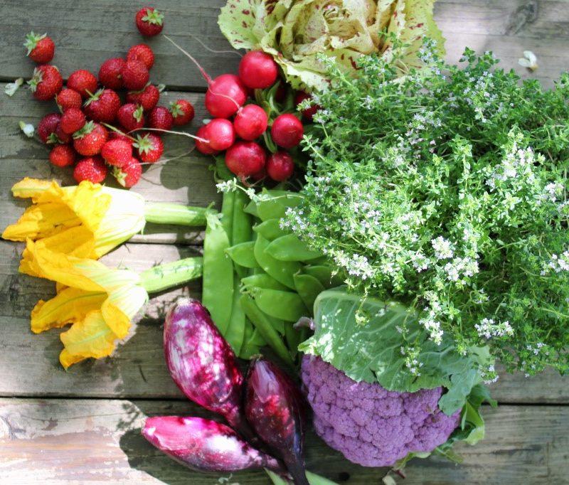 Il piano alimentare di primavera
